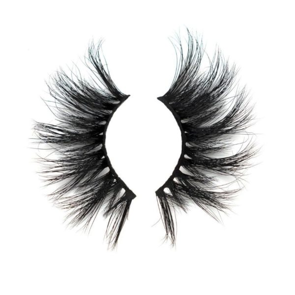 january-lashes